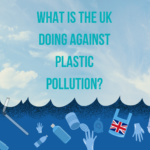 What is the UK doing against plastic pollution?